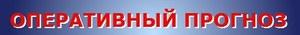 Ежедневный оперативный прогноз  возникновения чрезвычайных ситуаций на территории  Челябинской области на 16 июня 2021 года