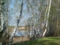 Полоцкое сельское поселение