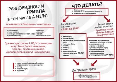 20110128_gripp_shema_knizhka.jpg